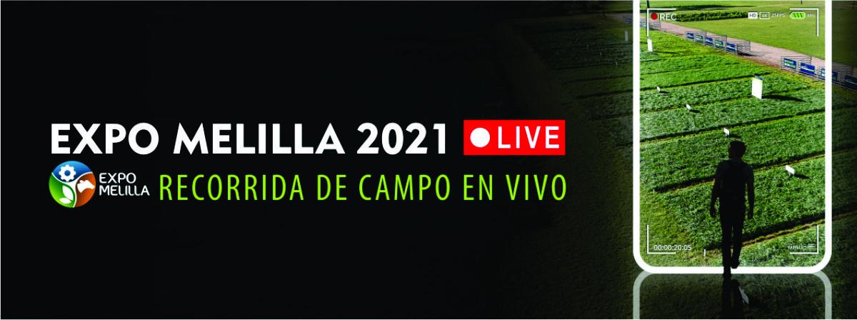 Expo Melilla 2021 LIVE
